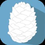 whitepinecone