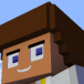 Saby The Minecraft disc