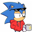 Sonic'sMCAnimator
