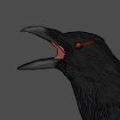 BlackCrow914